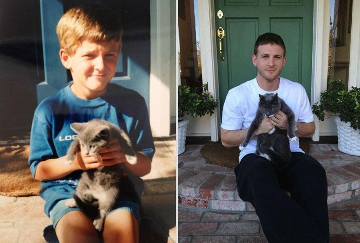 Before-After-Pets-07