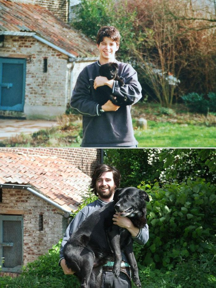 Before-After-Pets-10