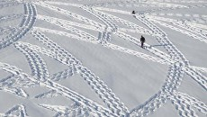 A Crazy Guy Just Walking Around In The Snow Or An Artistic Genius?