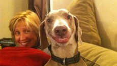 When animals go crazy: 20 Pictures with funny snoots!