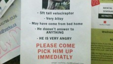 13 lost & found signs that will make you laugh!