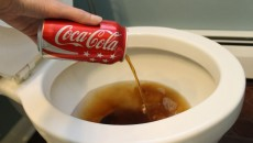 Why Coca-Cola doesn't belong to the human body + 50 example of use in your household