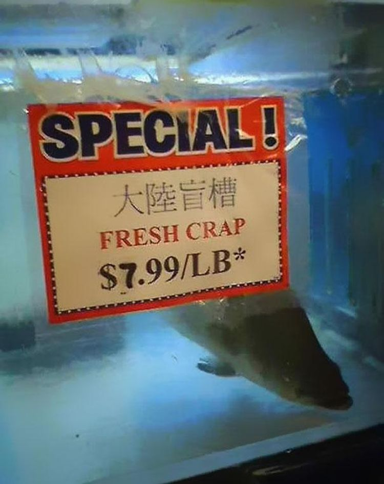 Funny-Chinese-Mistranslation-16