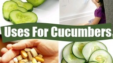 36 Applications For Cucumbers That Are Astonishing – #12 Is Really Interesting!