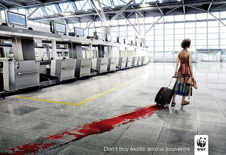 Dont-Buy-Exotic-Animal-Souvenirs