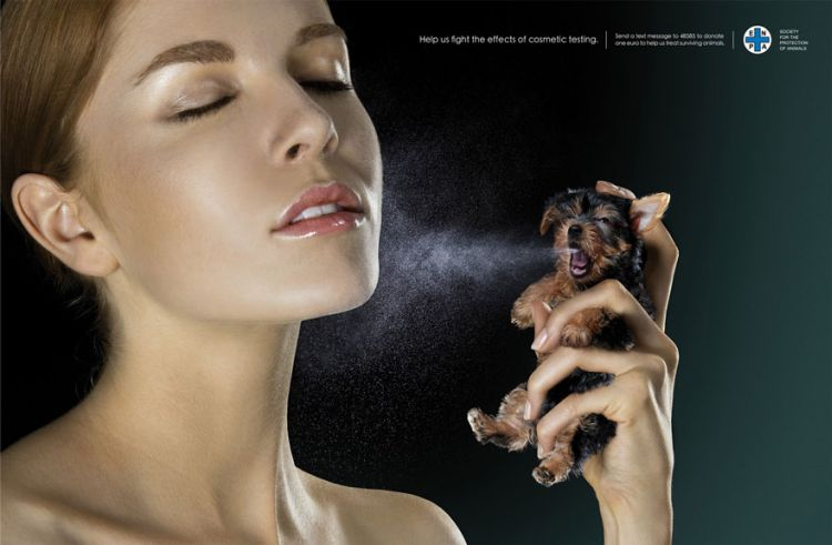 Fight-The-Effects-Of-Cosmetic-Testing-02