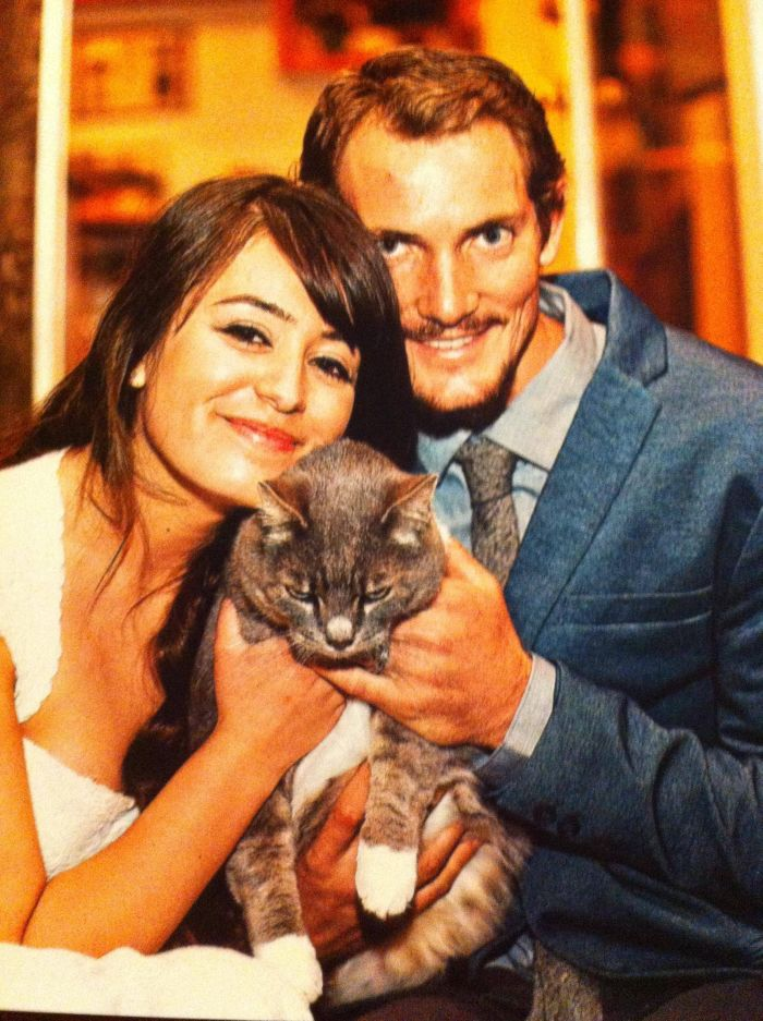Funny-Cats-Weddings-05