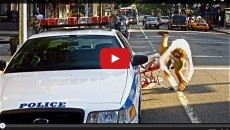 The revenge of the cyclist – Cops be alerted! (Video)