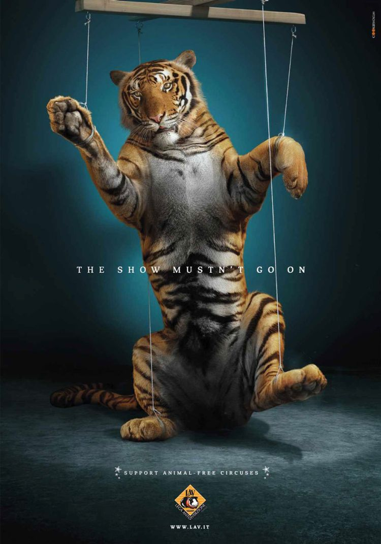 Support-Animal-free-Circuses