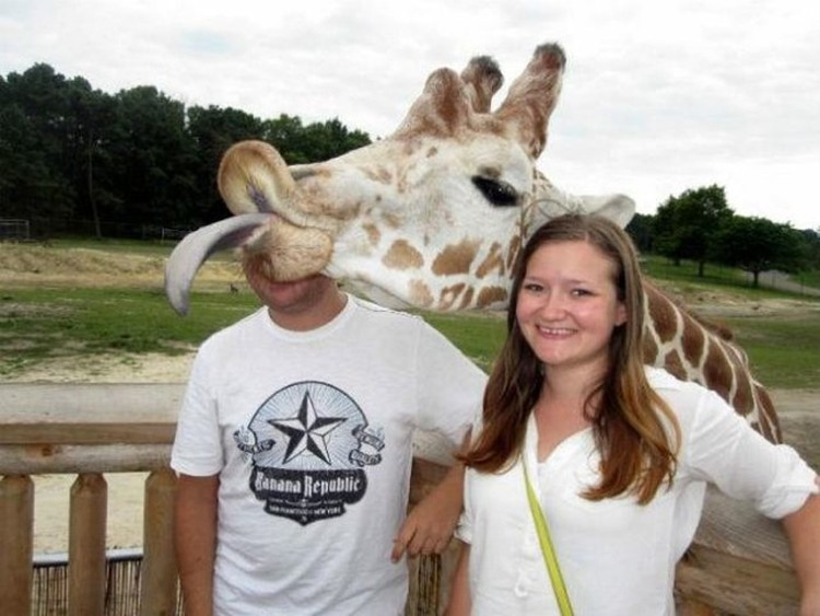 Funny-Animal-Photobombs-10