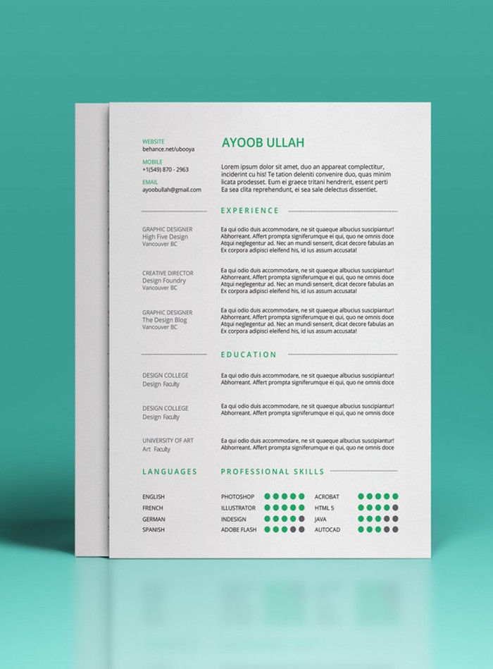27 Magnificent CV Designs That