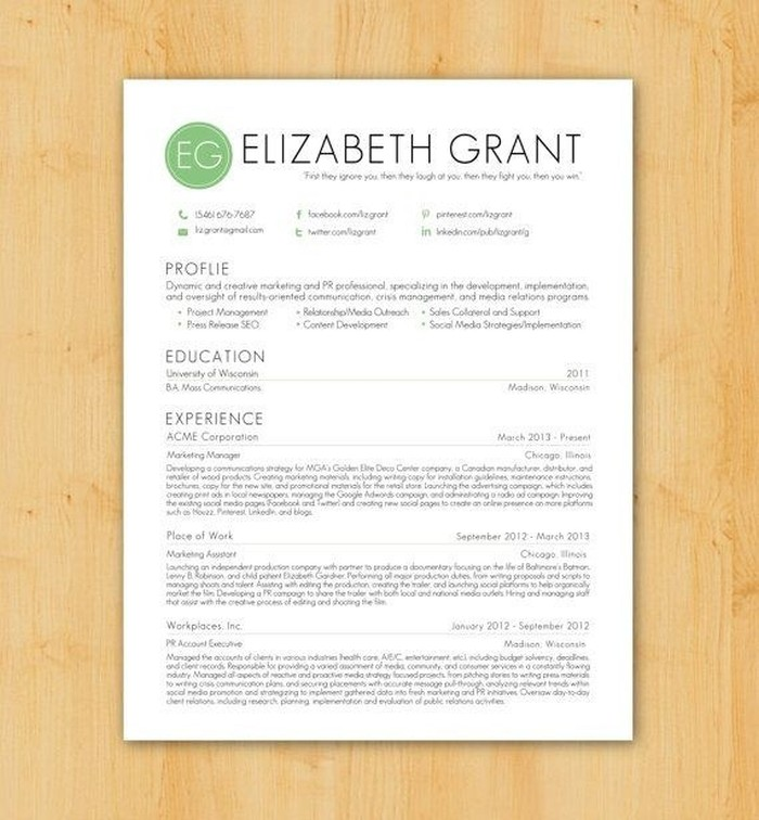 Resume CV Templates 15  Resume Designs