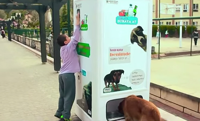 Vendig-Machine-To-Feed-Stray-Dogs-02