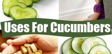 36 Applications For Cucumbers That Are Astonishing - #12 Is Really Interesting!